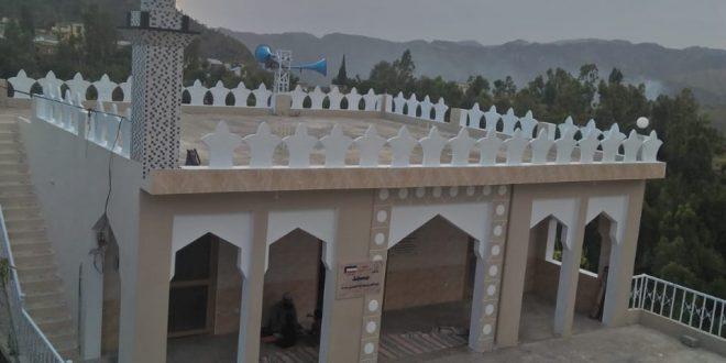 صيانة عامة داخلياً وخارجياً لمسجد عبدالعزيز عبدالله العنزي